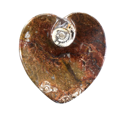 Ammonite Heart Plate