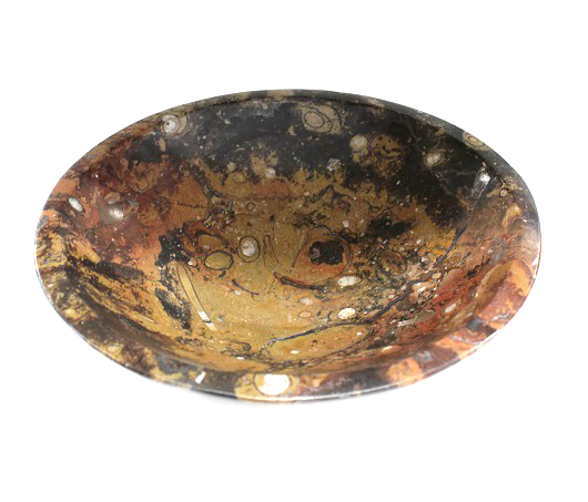 Fossil Bowl Large 20cm